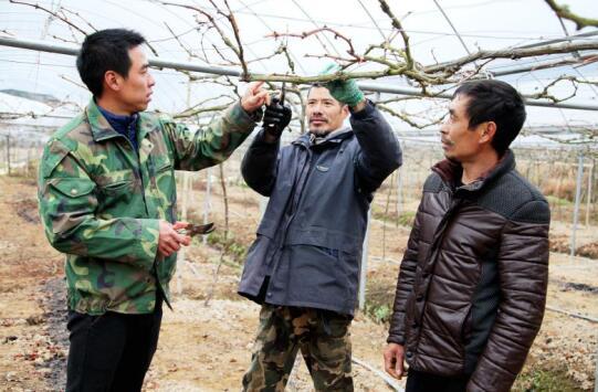 """南平:市关工委顾问对顺昌县的优秀""""种子""""项目进行调研"""