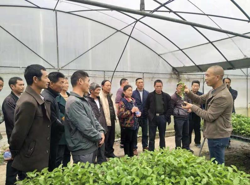 南平:邵武市关工委农科团与市农业局联合举办新型职业农民培训